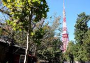 増上寺前_2020年10月25日